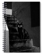 Witch's Cat In Moonlight... Spiral Notebook