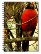 With A Song In My Heart Spiral Notebook