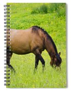 With A Swoosh Of The Tail Spiral Notebook