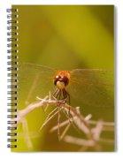 With Landing Gear Down  Spiral Notebook