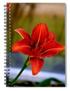 With Open Arms Spiral Notebook