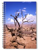 Withered Tree Paria Canyon Spiral Notebook