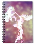 Withering Away - Magenta Sparkle Spiral Notebook