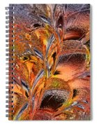 Within The Glass Spiral Notebook