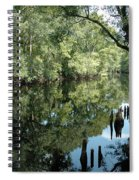 Withlacoochee River Reflections Spiral Notebook