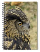 Wize Owl 2 Spiral Notebook