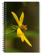 Wodland Flower With Curlicue On Top Spiral Notebook
