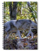 Wolf In The Woods Spiral Notebook