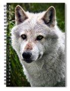 Wolf Alpha Male Spiral Notebook