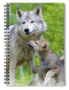 Wolf Of Minnesota Spiral Notebook
