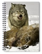 Wolf Protecting Kill Spiral Notebook