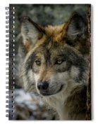 Wolf Upclose 2 Spiral Notebook