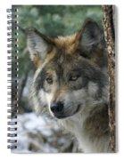 Wolf Upclose Spiral Notebook