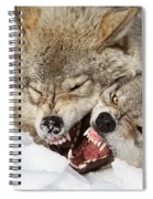 Wolves Rules Spiral Notebook