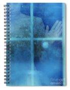 Woman At A Window Spiral Notebook