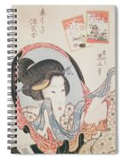 Woman At Her Mirror Spiral Notebook
