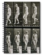 Woman Descending Steps Spiral Notebook