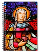Woman In Braids Spiral Notebook