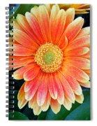 Wonderful Daisy Spiral Notebook