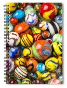 Wonderful Marbles Spiral Notebook