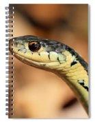 Wondering What I Am Spiral Notebook