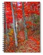 Wonders Of Autumn  Spiral Notebook