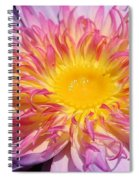Wonders Of Nature Spiral Notebook