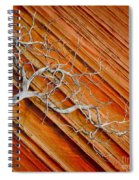 Wood And Stone Spiral Notebook