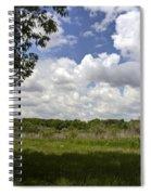 Wood Bench Spiral Notebook