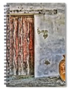 Wood Door And Clay Pot By Diana Sainz Spiral Notebook