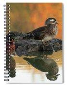 Wood Ducks Spiral Notebook
