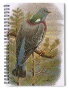 Wood Pigeon Spiral Notebook