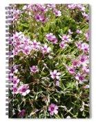 Wood Sorrel Spiral Notebook