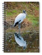 Wood Stork  Spiral Notebook