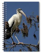 Wood Stork Spiral Notebook
