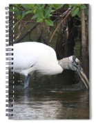 Wood Stork In The Swamp Spiral Notebook
