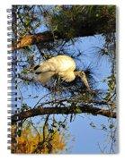 Wood Stork Perch Spiral Notebook