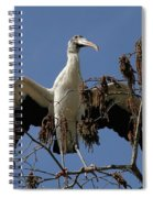 Wood Stork Preparing To Fly Spiral Notebook