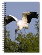 Wood Storks Spiral Notebook