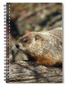 Woodchuck Spiral Notebook