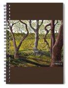 Wooded Glade Spiral Notebook