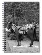 Wooden Horse6 Spiral Notebook