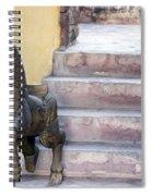 Wooden Horses 2 Spiral Notebook