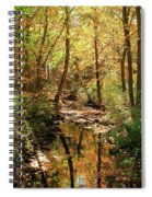 Woodland Brook  Spiral Notebook
