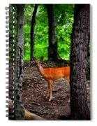 Woodland Deer Spiral Notebook