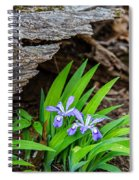 Woodland Dwarf Iris Wildflowers Spiral Notebook