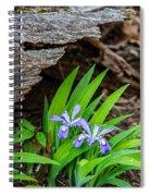 Woodland Dwarf Iris Wildflowers Spiral Notebook