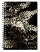 Woodland Fern Spiral Notebook
