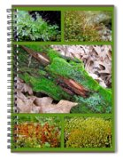 Woodland Mosses Spiral Notebook