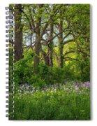 Woodland Phlox 2 Spiral Notebook